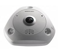 Fisheye IP-камера DS-2CD63C2F-IS (1.98mm)